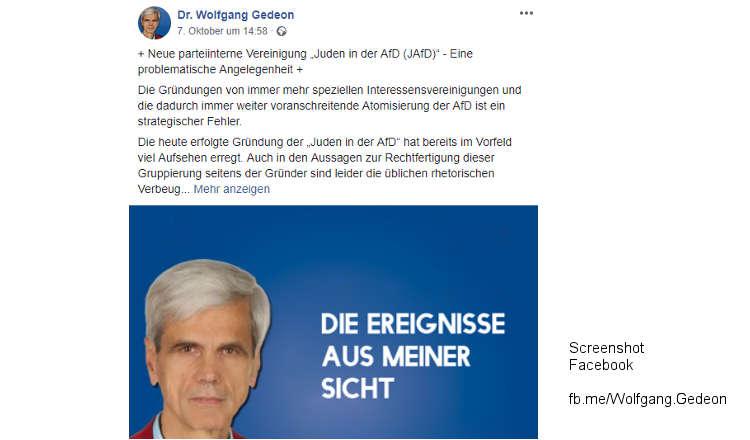 Alice Weidel (AfD) will Verschwörungstheoretiker Gedeon aus Partei werfen