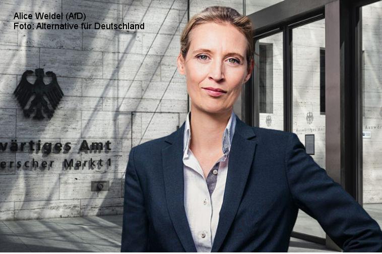 Alice Weidel (AfD) fordert Senkung der Mineralölsteuer