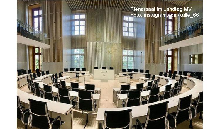 Zoff im Landtag M-V: AfD polarisiert gegen Migrationspakt