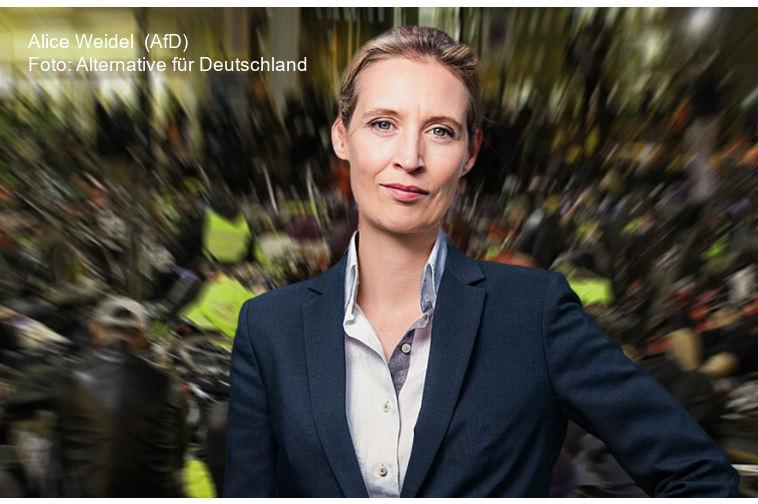 Alice Weidel (AfD) fordert Rücktritt von Präsident Macron