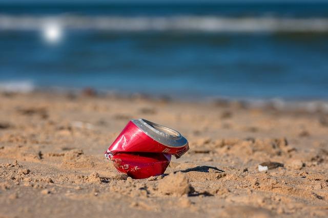 Müllsammelaktion 2019 am Strand der Rostocker Heide