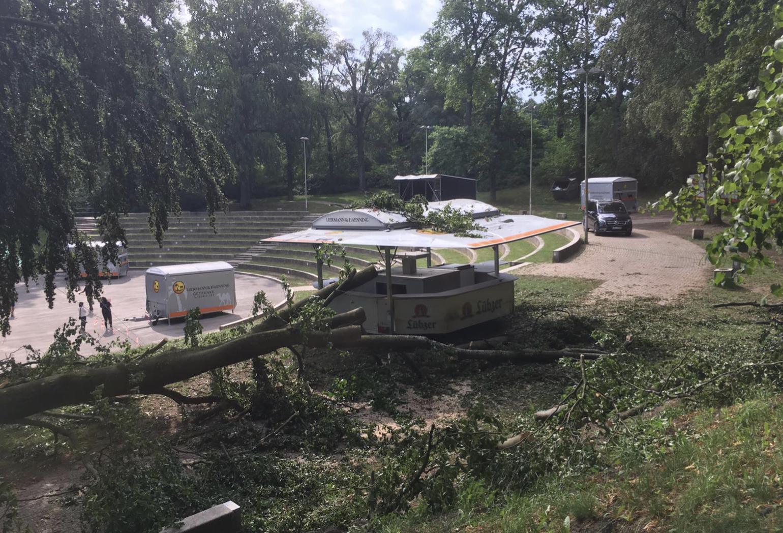Großer Ast abgeknickt: 29 Verletzte auf Schweriner 90er-Feier