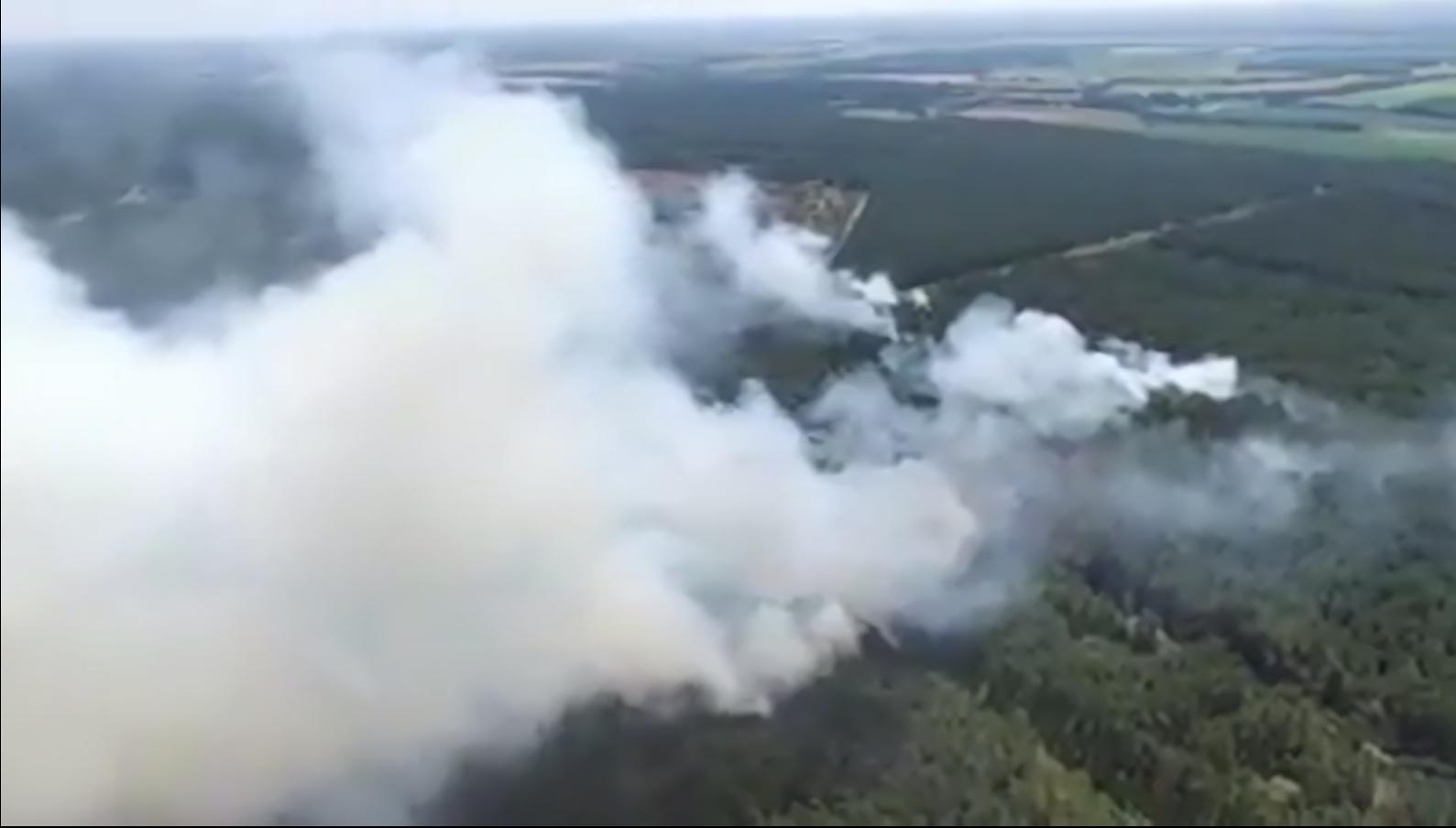 Waldbrand bei Lübtheen: Es war BRANDSTIFTUNG ! – Polizei sucht Zeugen