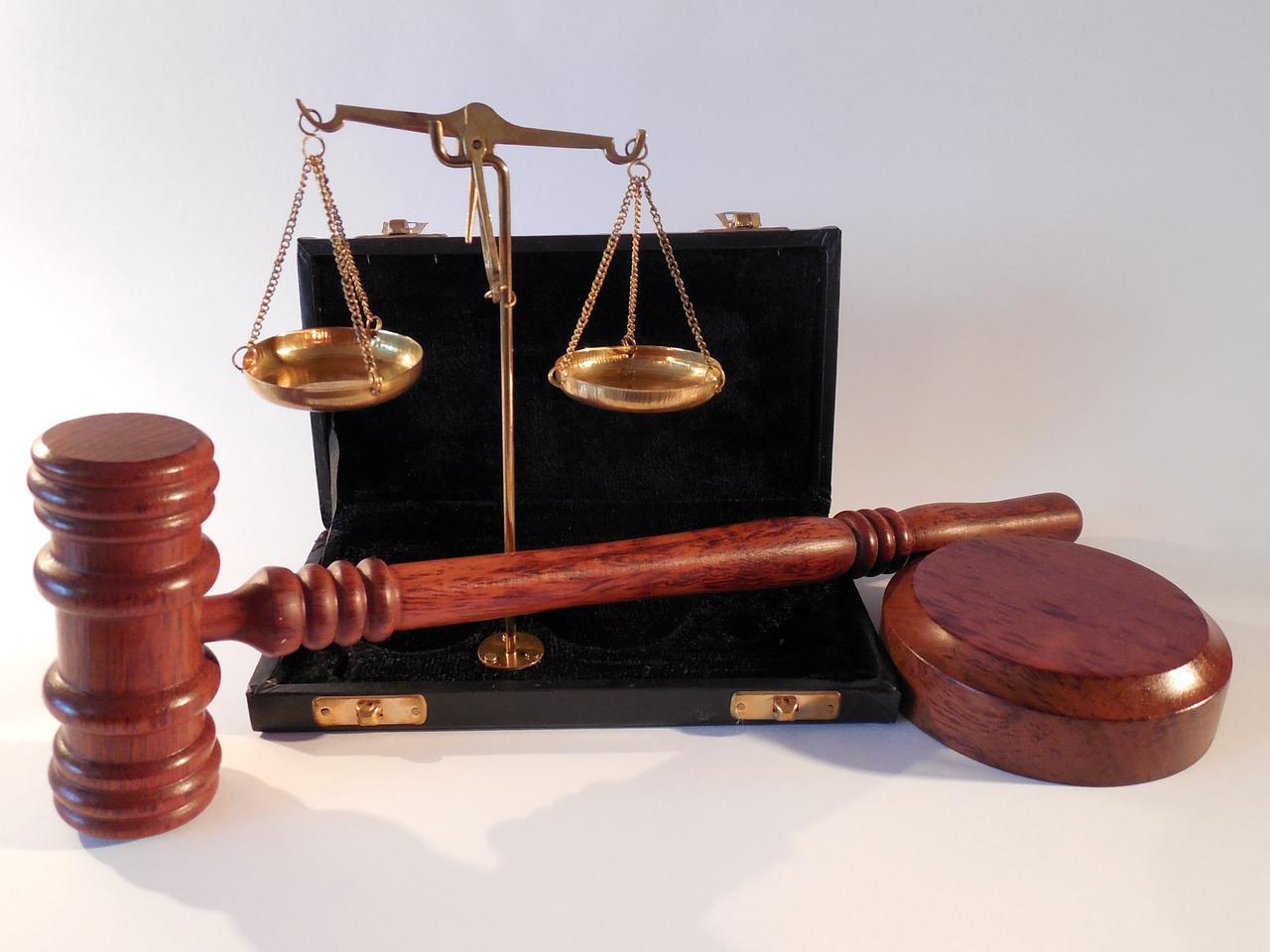 FDP und AfD mobilisieren gegen linke Richterin