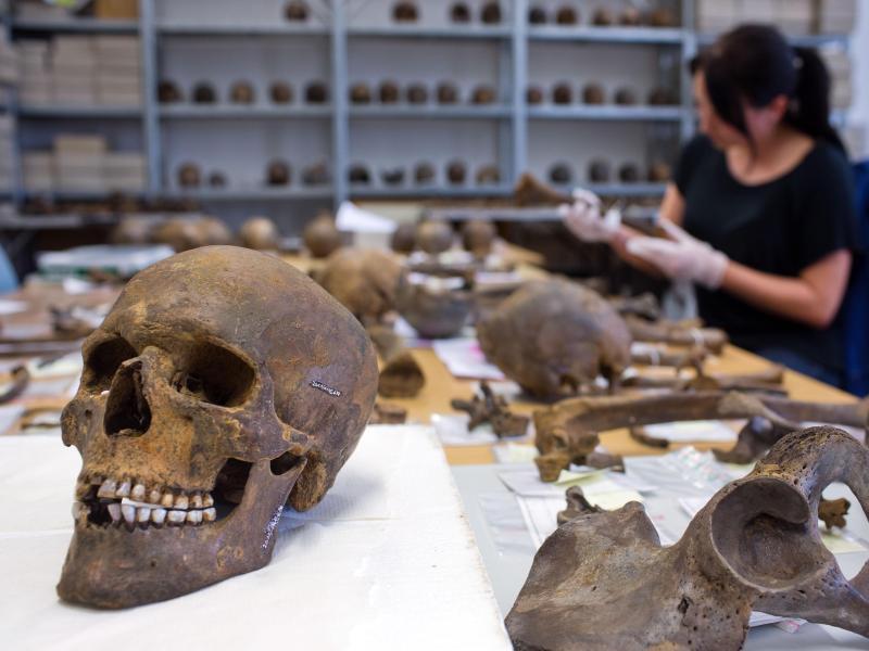 Tollenseetal: Theorien zur ältesten Schlacht der Welt