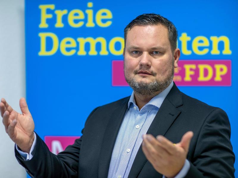 Landeschef Domke soll FDP zurück in den Landtag führen