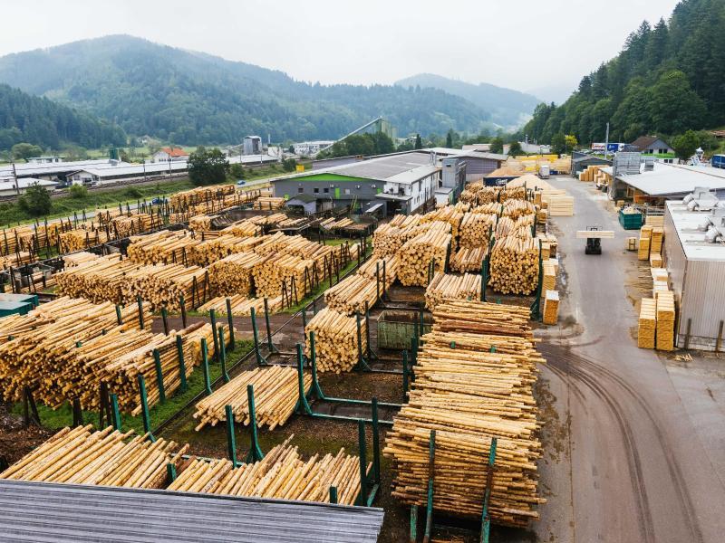Rohstoffmangel: Handwerk will mehr Holzeinschlag